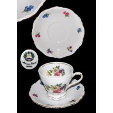 Mitterteich Meissen Floral Cup/Saucer Set
